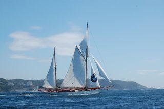 Cynara_under_sail